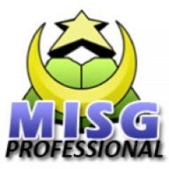 MISG Professional